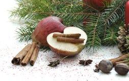 Φρούτα και καρυκεύματα για το επιδόρπιο Στοκ Εικόνες