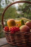 Φρούτα και λαχανικά φθινοπώρου σε ένα καλάθι υπαίθριο Στοκ εικόνες με δικαίωμα ελεύθερης χρήσης
