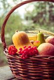Φρούτα και λαχανικά φθινοπώρου σε ένα καλάθι υπαίθριο Στοκ Φωτογραφίες