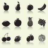 Φρούτα και μούρα, σκιαγραφίες Στοκ Εικόνα