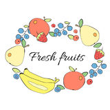 Φρούτα και πλαίσιο μούρων Στοκ εικόνες με δικαίωμα ελεύθερης χρήσης