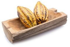 Φρούτα κακάου, ακατέργαστα φασόλια κακάου, λοβός κακάου που απομονώνεται στο άσπρο backgr Στοκ εικόνες με δικαίωμα ελεύθερης χρήσης