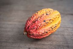Φρούτα κακάου, ακατέργαστα φασόλια κακάου, λοβός κακάου στο ξύλινο υπόβαθρο Στοκ εικόνα με δικαίωμα ελεύθερης χρήσης
