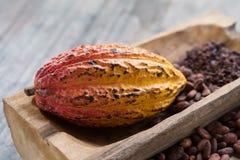 Φρούτα κακάου, ακατέργαστα φασόλια κακάου, λοβός κακάου στο ξύλινο υπόβαθρο Στοκ εικόνες με δικαίωμα ελεύθερης χρήσης
