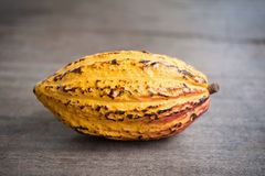 Φρούτα κακάου, ακατέργαστα φασόλια κακάου, λοβός κακάου στο ξύλινο υπόβαθρο Στοκ Εικόνα