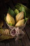 Φρούτα κακάου, ακατέργαστα φασόλια κακάου, λοβός κακάου στο ξύλινο υπόβαθρο Στοκ Εικόνες