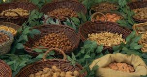 Φρούτα καρυδιών απόθεμα βίντεο