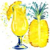 Φρούτα κοκτέιλ, πάγος και ένας παφλασμός Συρμένη χέρι απεικόνιση watercolor ελεύθερη απεικόνιση δικαιώματος