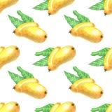 Φρούτα μάγκο με το άνευ ραφής σχέδιο φύλλων απεικόνιση αποθεμάτων