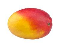 Φρούτα μάγκο που απομονώνονται στο άσπρο υπόβαθρο στοκ εικόνα με δικαίωμα ελεύθερης χρήσης