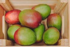 Φρούτα μάγκο Στοκ Φωτογραφίες