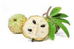 Φρούτα μήλων κρέμας με τα φύλλα στο άσπρο υπόβαθρο Στοκ φωτογραφίες με δικαίωμα ελεύθερης χρήσης
