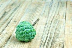 Φρούτα μήλων κρέμας Στοκ Φωτογραφία