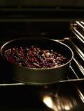 Φρούτα μούρων ξινά Στοκ εικόνα με δικαίωμα ελεύθερης χρήσης