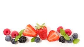 Φρούτα μούρων Στοκ Φωτογραφίες
