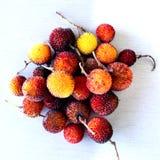 Φρούτα μούρων Arbutus Στοκ Εικόνα