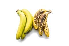 Φρούτα - μπανάνες Στοκ Φωτογραφία