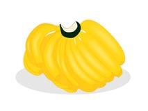 Φρούτα μπανανών Στοκ Εικόνα