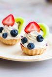 Φρούτα ξινά Στοκ εικόνα με δικαίωμα ελεύθερης χρήσης
