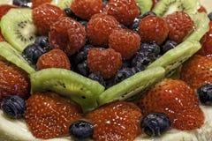 Φρούτα ξινά Στοκ φωτογραφία με δικαίωμα ελεύθερης χρήσης