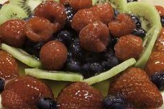 Φρούτα ξινά Στοκ Εικόνες