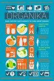 Φρούτα οφελών πληροφοριών εικόνας, υγεία οργανικής τροφής Στοκ Εικόνες