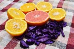 Φρούτα πάνω από ένα τραπεζομάντιλο Στοκ Εικόνες