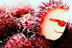 Φρούτα πανκ Στοκ Φωτογραφία