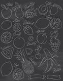 Φρούτα πινάκων κιμωλίας Διανυσματική απεικόνιση