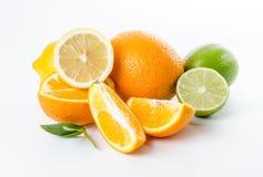 Φρούτα Πορτοκαλής ασβέστης λεμονιών και πράσινα φύλλα μεντών Στοκ Φωτογραφία