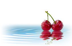 Φρούτα που απομονώνονται στο νερό Στοκ εικόνα με δικαίωμα ελεύθερης χρήσης