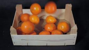 Φρούτα που γεμίζουν το ξύλινο πεδίο απόθεμα βίντεο