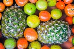 Φρούτα που ενυδατώνονται στη λεκάνη Στοκ φωτογραφία με δικαίωμα ελεύθερης χρήσης