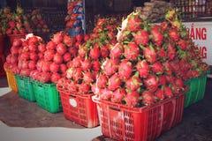 Φρούτα δράκων συγκομιδών Στοκ φωτογραφία με δικαίωμα ελεύθερης χρήσης