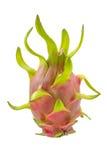 Φρούτα δράκων. Στοκ εικόνα με δικαίωμα ελεύθερης χρήσης