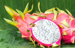 Φρούτα δράκων (Pitaya) Στοκ Εικόνα
