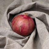 Φρούτα ροδιών στον καμβά Στοκ εικόνα με δικαίωμα ελεύθερης χρήσης