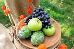 Φρούτα σε ένα πιάτο Στοκ εικόνα με δικαίωμα ελεύθερης χρήσης