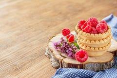 Φρούτα σμέουρων ξινά Στοκ Εικόνες