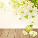 Φρούτα της Apple για τα υγιή τρόφιμα προγευμάτων Στοκ φωτογραφία με δικαίωμα ελεύθερης χρήσης