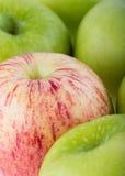 Φρούτα της Apple με τις πτώσεις νερού Στοκ εικόνες με δικαίωμα ελεύθερης χρήσης