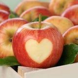 Φρούτα της Apple με το θέμα αγάπης καρδιών Στοκ εικόνα με δικαίωμα ελεύθερης χρήσης