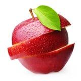 Φρούτα της Apple που απομονώνονται Στοκ Εικόνα