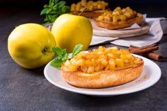 Φρούτα της Apple που διαδίδονται με τα κομμάτια κανέλας και φρούτων Στοκ Εικόνες