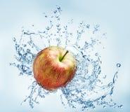 Φρούτα της Apple που περιβάλλονται Στοκ Εικόνες