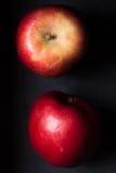 Φρούτα της Apple σε ένα μαύρο υπόβαθρο Στοκ Φωτογραφία