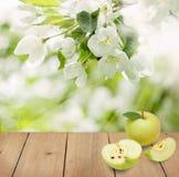 Φρούτα της Apple στον καφετή ξύλινο πίνακα Στοκ εικόνες με δικαίωμα ελεύθερης χρήσης