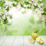 Φρούτα της Apple στο αφηρημένο υπόβαθρο με τα πράσινα φύλλα Στοκ Εικόνα