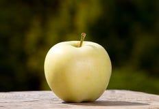 Φρούτα της Apple στο υπόβαθρο φύσης, τρόφιμα Στοκ Φωτογραφίες
