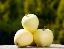 Φρούτα της Apple στο υπόβαθρο φύσης, τρόφιμα Στοκ Εικόνα